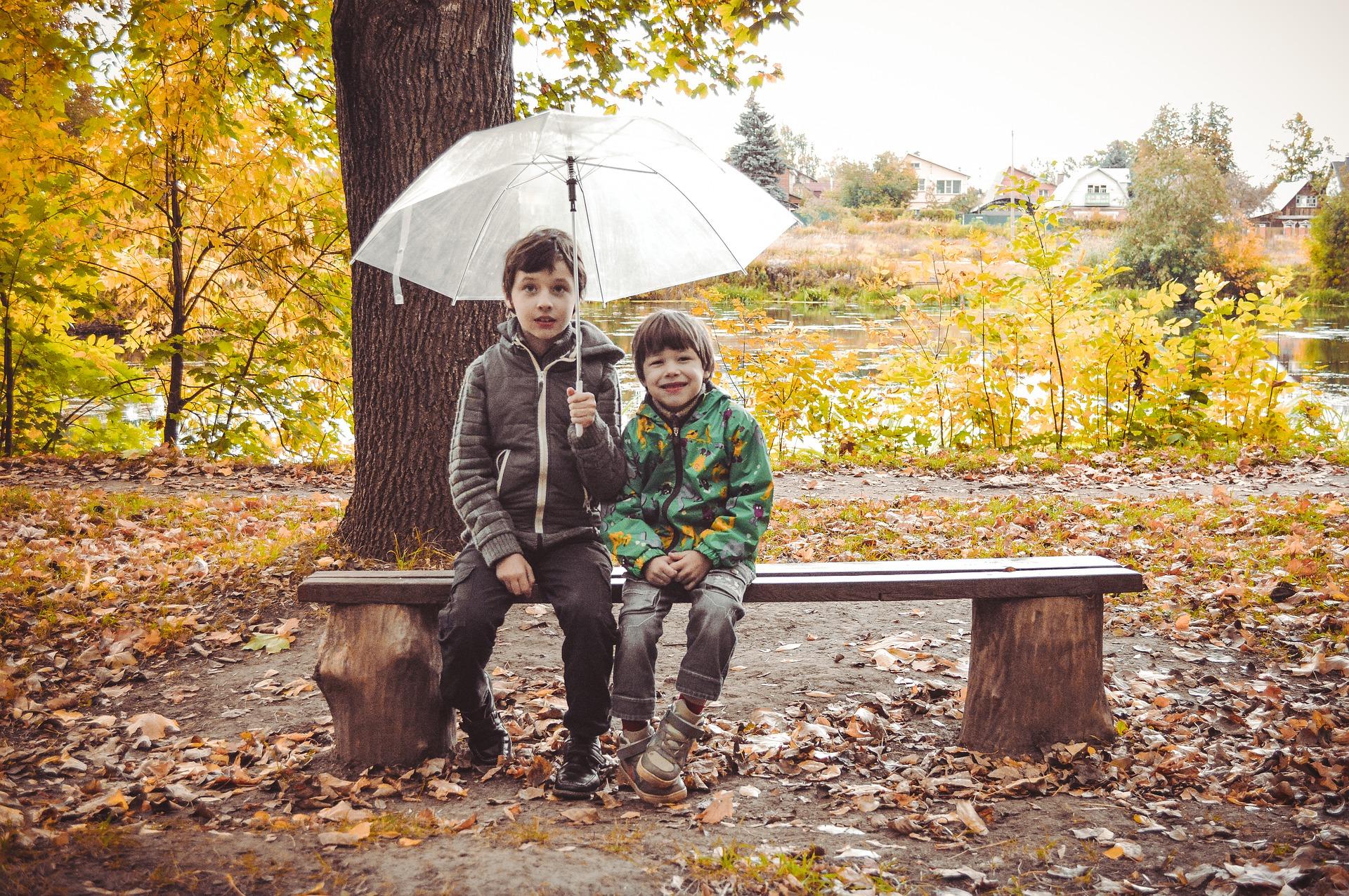 umbrella-4508003_1920